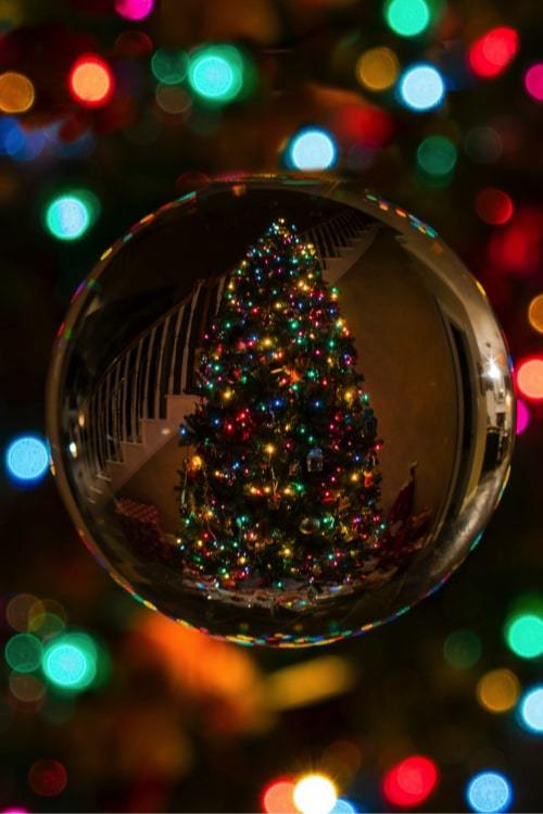 reflection of decorated Christmas tree